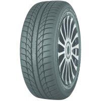 Зимняя  шина GT Radial Champiro WinterPro 205/55 R16 91T